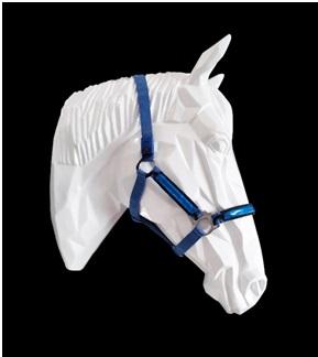 Auf Wunsch beleuchtbarer Pferdehalfter oder Trense